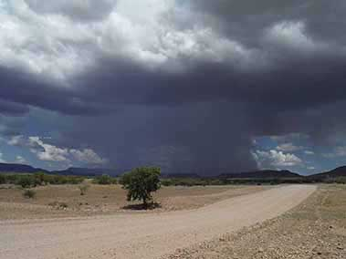 Rainfall in the Desert